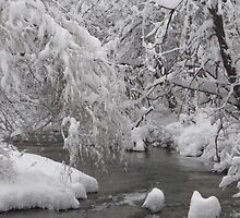 Freezing river, blanketed in snow by clairekelly95