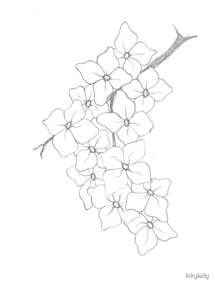 jasmine by inkylady