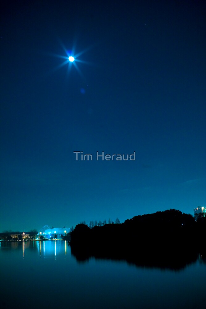 Lunatic Behaviour by Tim Heraud
