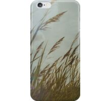 Dutch Dunes in the Summer Sun  iPhone Case/Skin