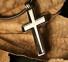 Cross by Tanya Muller