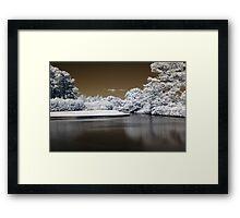 1. Framed Print