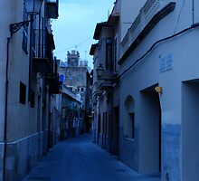Around Palma  by Eugenia