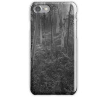 Experiments in Processing # 5 - Mount Wilson NSW - The HDR Experience iPhone Case/Skin