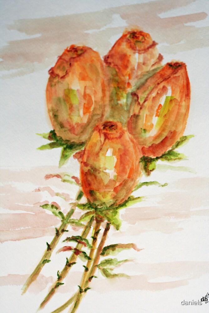 rosebuds by daniels