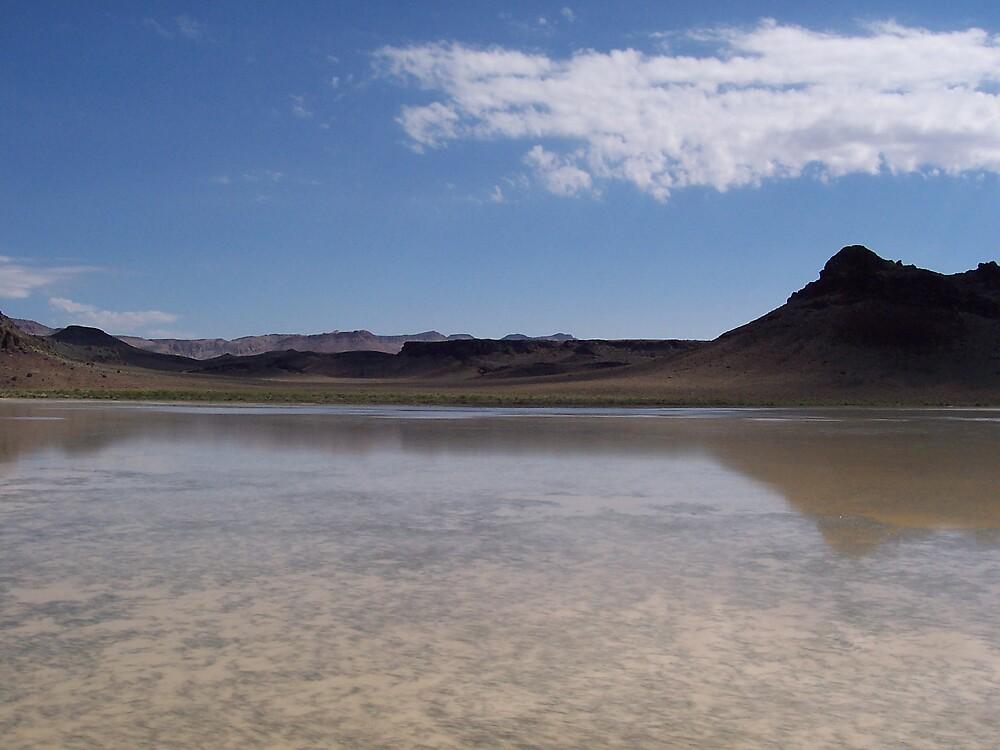 Desert Oasis by CynthiaRenee