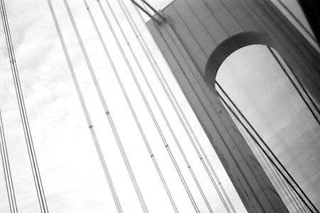 Bridge by Dawn Rossi