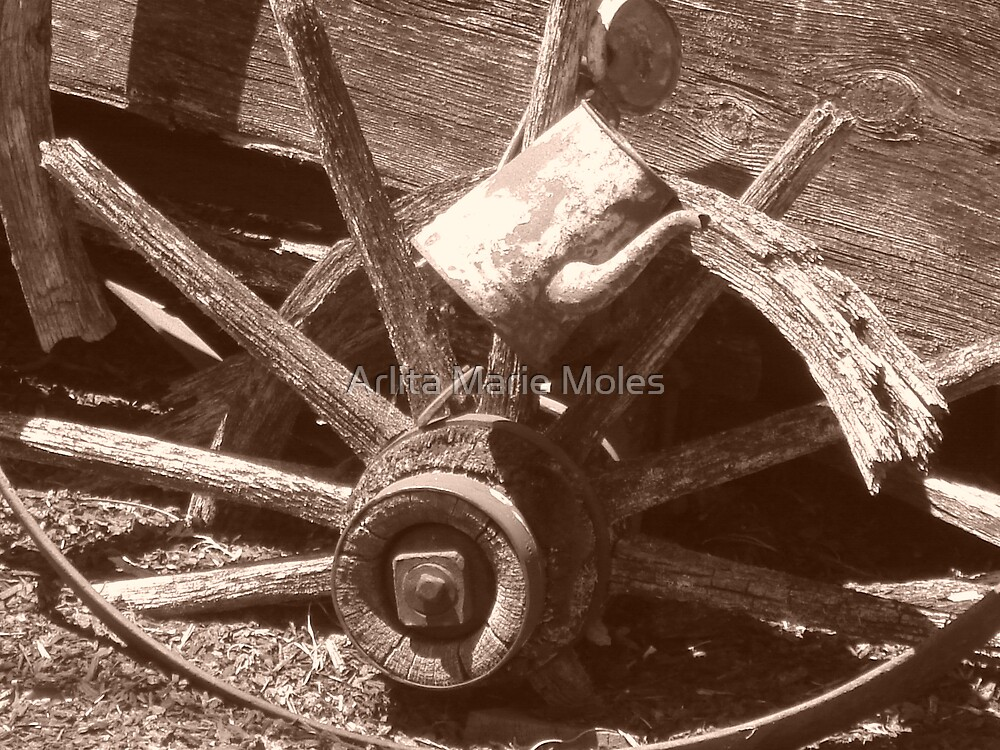 Rustic Wheel by Arlita Marie Moles