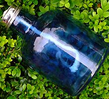 Blue glass on boxwood by Sjouke Veenbaas
