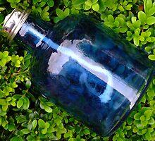 Blue glass on boxwood by Sjouke Veenbaas