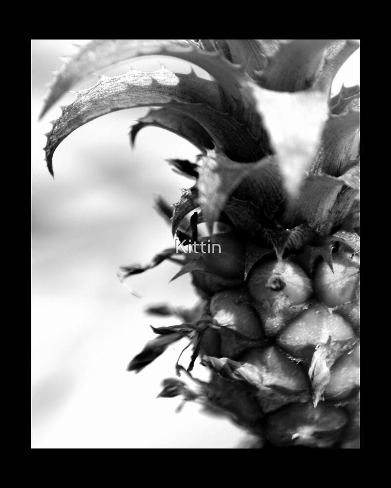 fruit 01 by Kittin