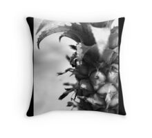 fruit 01 Throw Pillow