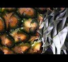 fruit 02 by Kittin