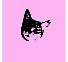 Pink Kitty Head Photographic Print