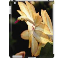 Christmas Cactus - White Swan Floral iPad Case/Skin
