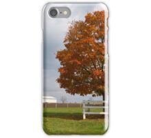The orange tree iPhone Case/Skin