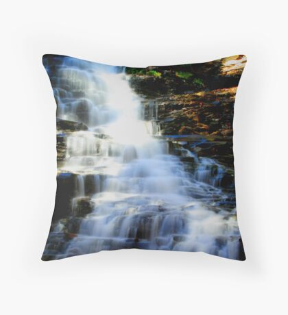 Ricketts Glen Throw Pillow