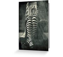 Zebra book for girls Greeting Card