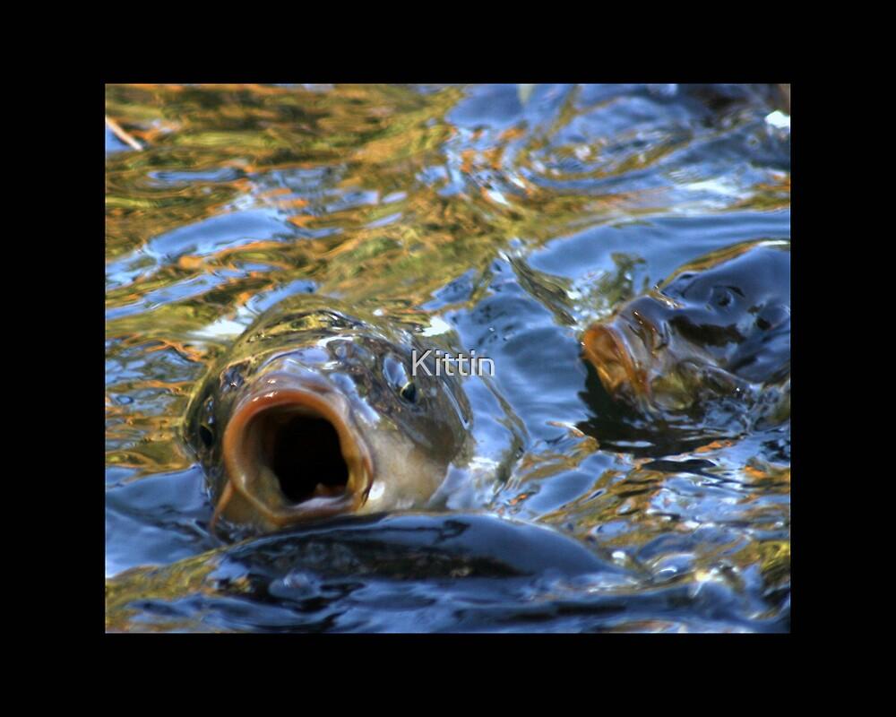fish 03 by Kittin