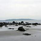 Island In The Fog by Martha Medford