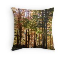 Autumn Drive Down Cross Creek Throw Pillow