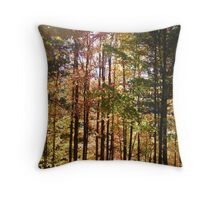 Autumn Drive in Michigan Throw Pillow