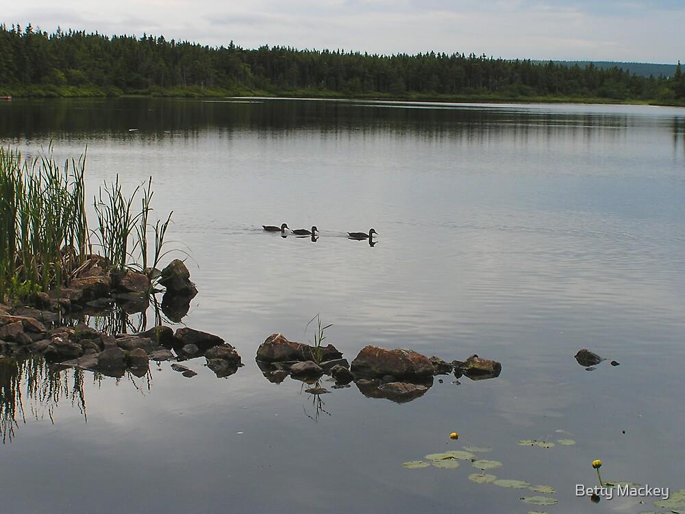 Lake to Infinity by Betty Mackey