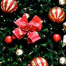 Christmas tree close up by gemynd