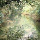Ahrtal Valley by MendipBlue