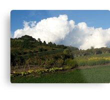 The Winery Gardens Metal Print