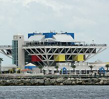St Petersburg Pier by Sam Hanie