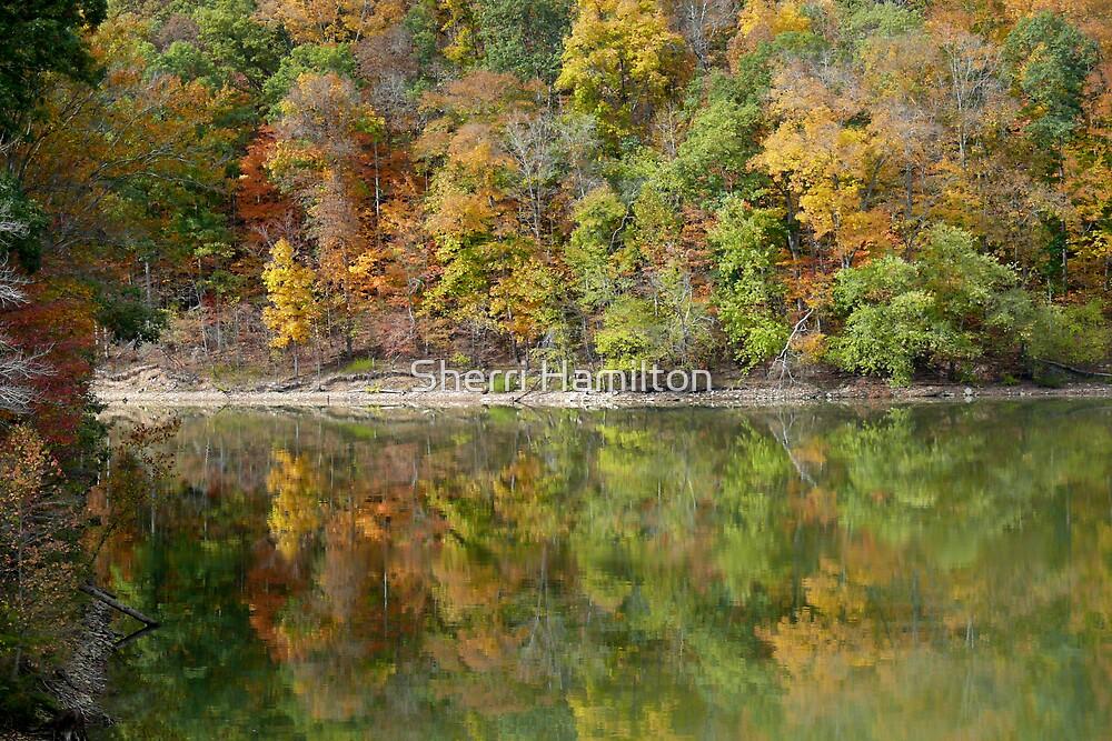 Autumn Bliss by Sherri Hamilton