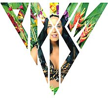 Katy Perry Roar Prism Photographic Print