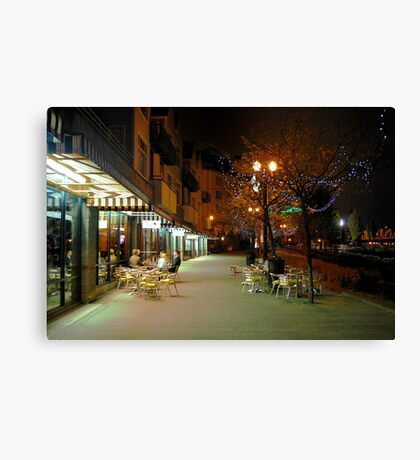 Early Morning Friends Canvas Print