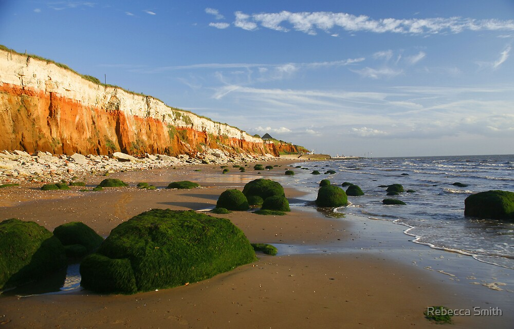 Coastal Cliffs by Rebecca Smith