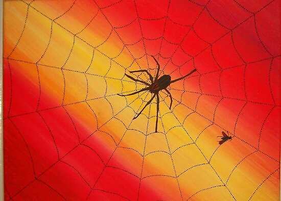 Spider Web by Derek Trayner