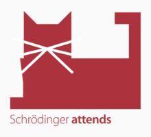 Schrödinger attends by Zern Liew