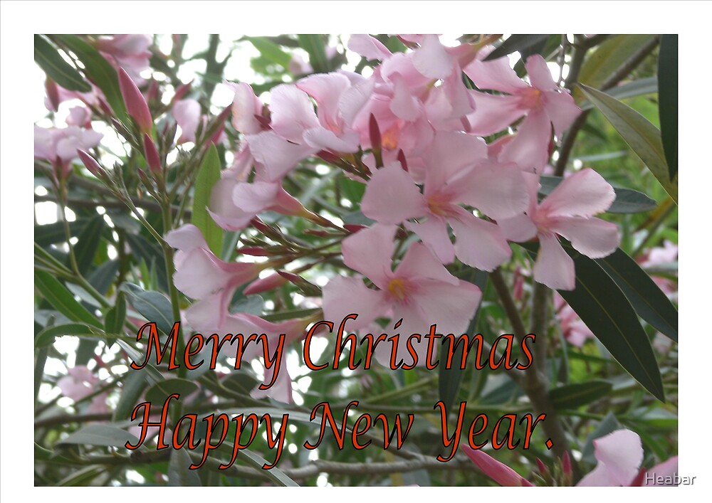 Merry Christmas pink flowers by Heabar