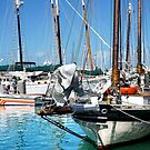 Marinas and Masts by Kathilee