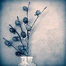 Sweet Blue by James McKenzie