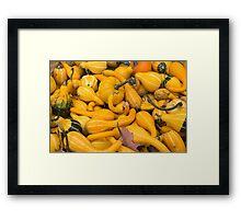 gourds Framed Print