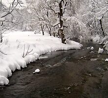 Wild Water in winter by clairekelly95