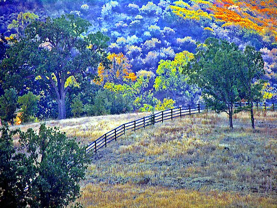 Fence In The Fall by Rany Lutz