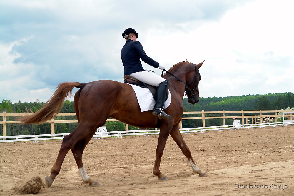 horse riding 1 by Stanislovas Kairys