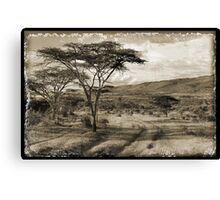 Happy valley #2 Canvas Print