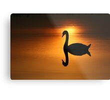 On Golden Pond  Metal Print
