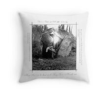 How Neal lost his Head at the Fairy Fort Throw Pillow