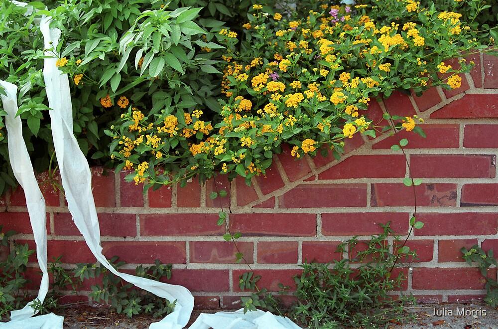 East Hill Flowers by Julia Morris