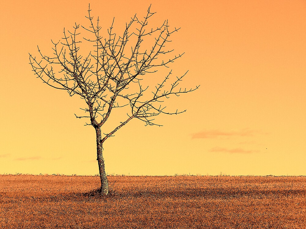 Orange Landscape 1 by Gene Cyr
