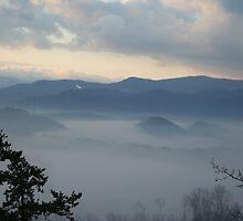 Gatlinburg Tn Foggy Mountain Morning by Raymond Desjardin